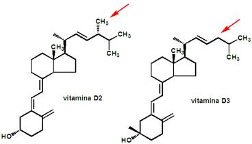 vitaminas-d2-d3