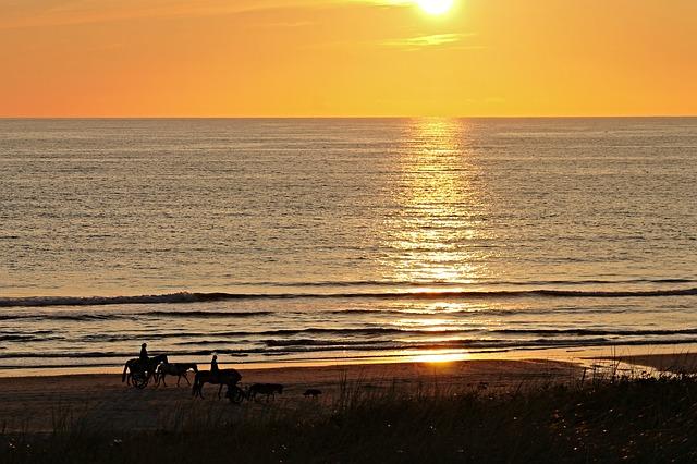 beach-2729541_640